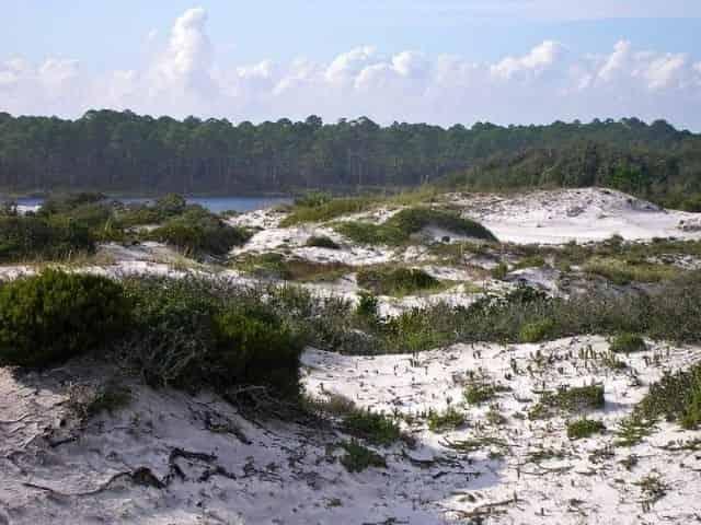 Coastal dune lake in 30A, Florida