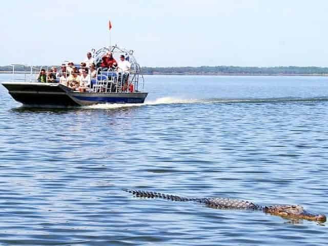 airboat tour in Ocean Springs for adults