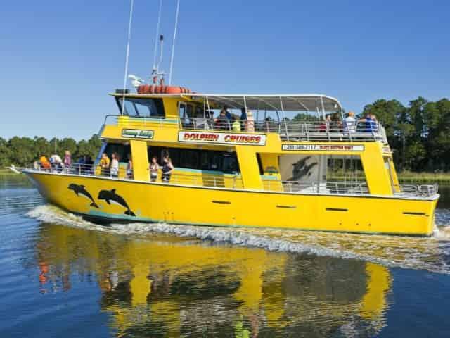gulf shores dolphin cruises