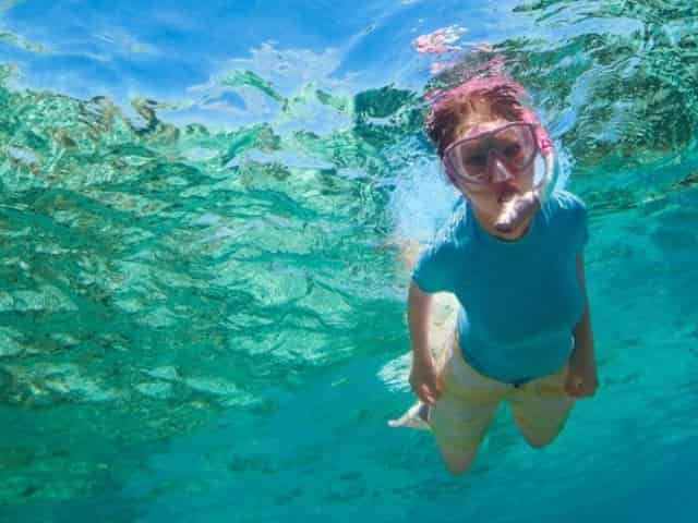 snorkeling the coral reefs in key west
