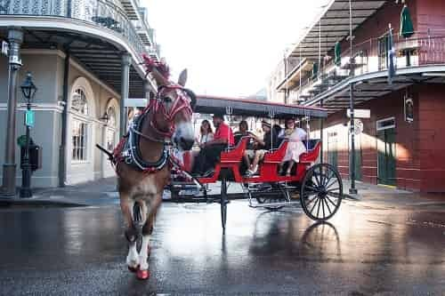 daytime french quarter carriage ride