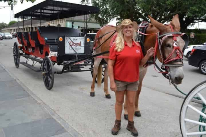 New Orleans Carriage Rides Coupons 2020
