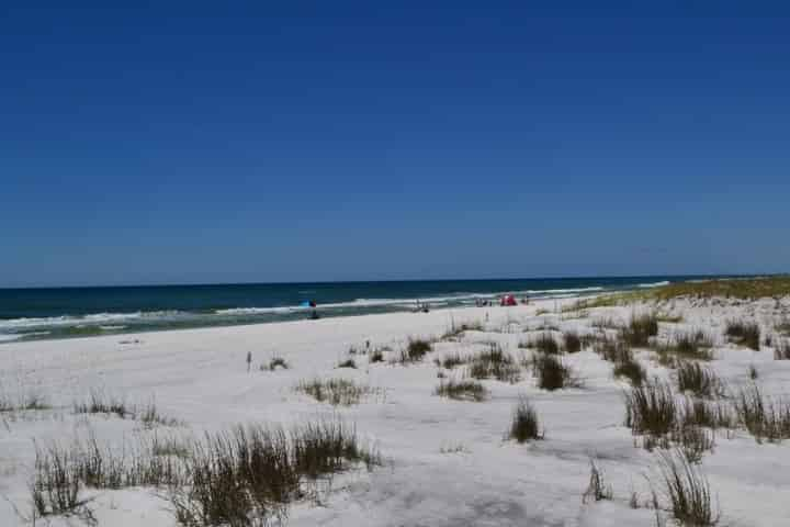 Pensacola Beach Things To Do in Winter