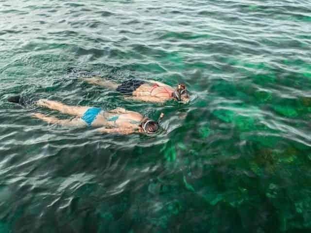 snorkeling at higgs beach