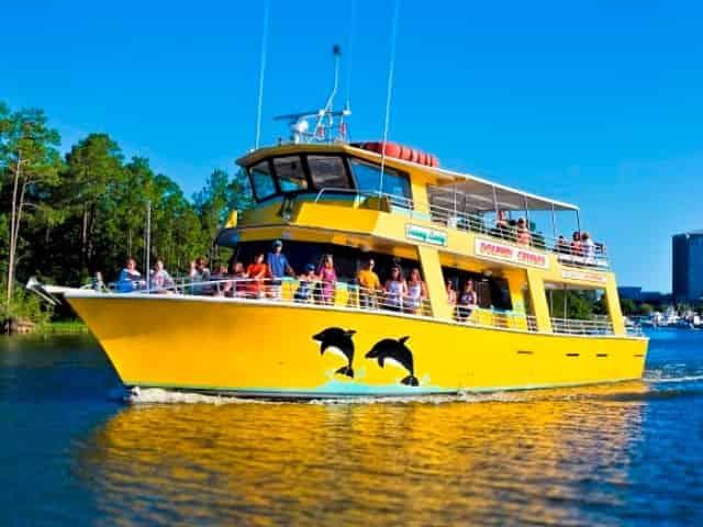 sunny lady dolphin cruise