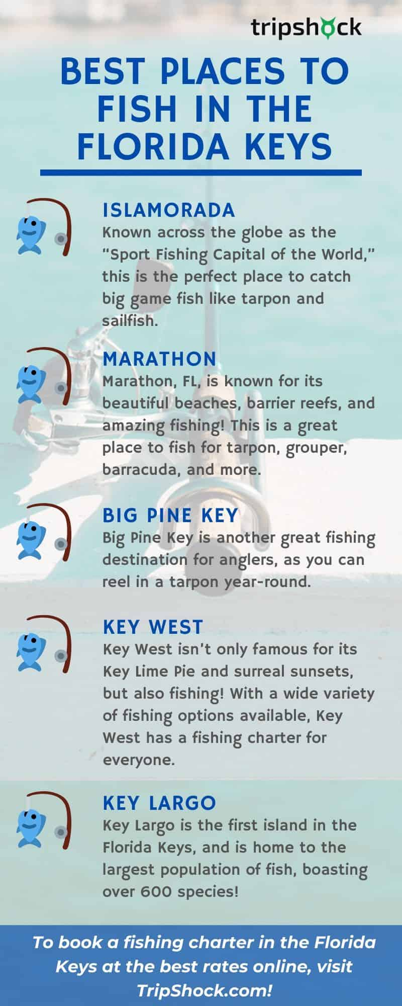 Best Places to Fish in the Florida Keys