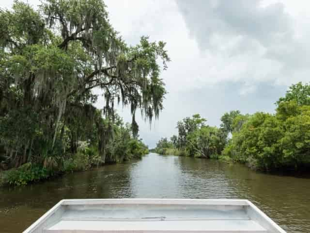 airboat tour through a New Orleans swamp