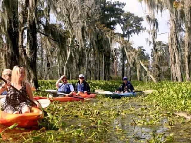 kayak tour new orleans