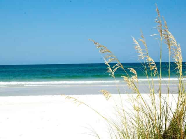shell island panama city beach fl