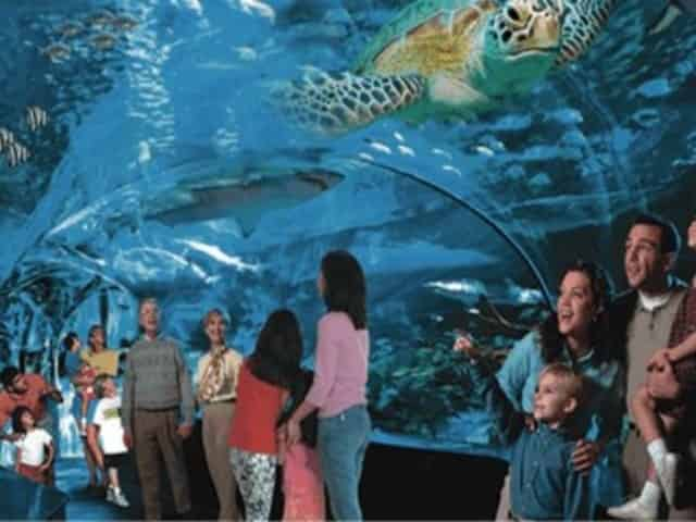 myrtle beach sc ripleys attractions for families