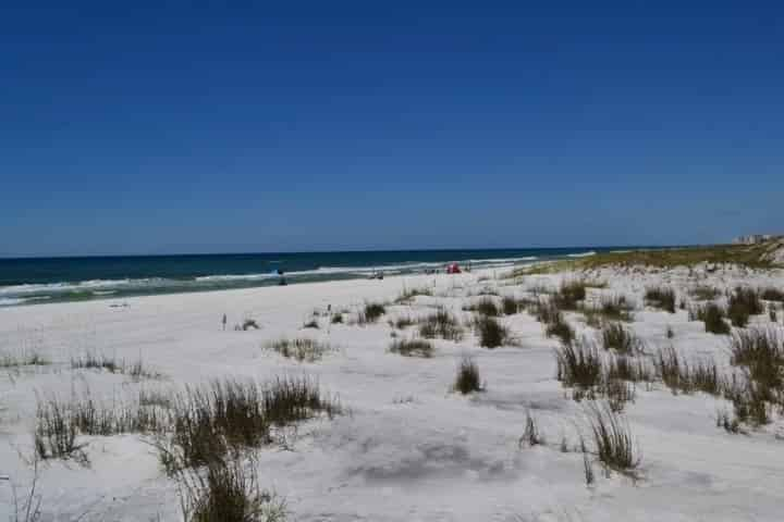 Try These Incredible Shell Island Activities on your Family Vacation