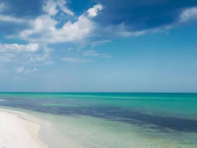 Pristine beaches in Pensacola Beach Florida