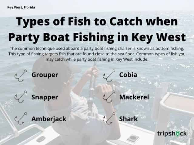 Types of Fish to Target when Party Boat Fishing