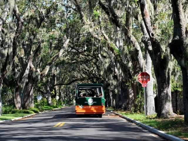 city sightseeing tour in downtown St. Augustine
