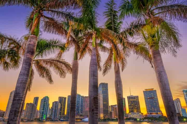 Here's What to do in Miami in Winter - Top 7 Activities