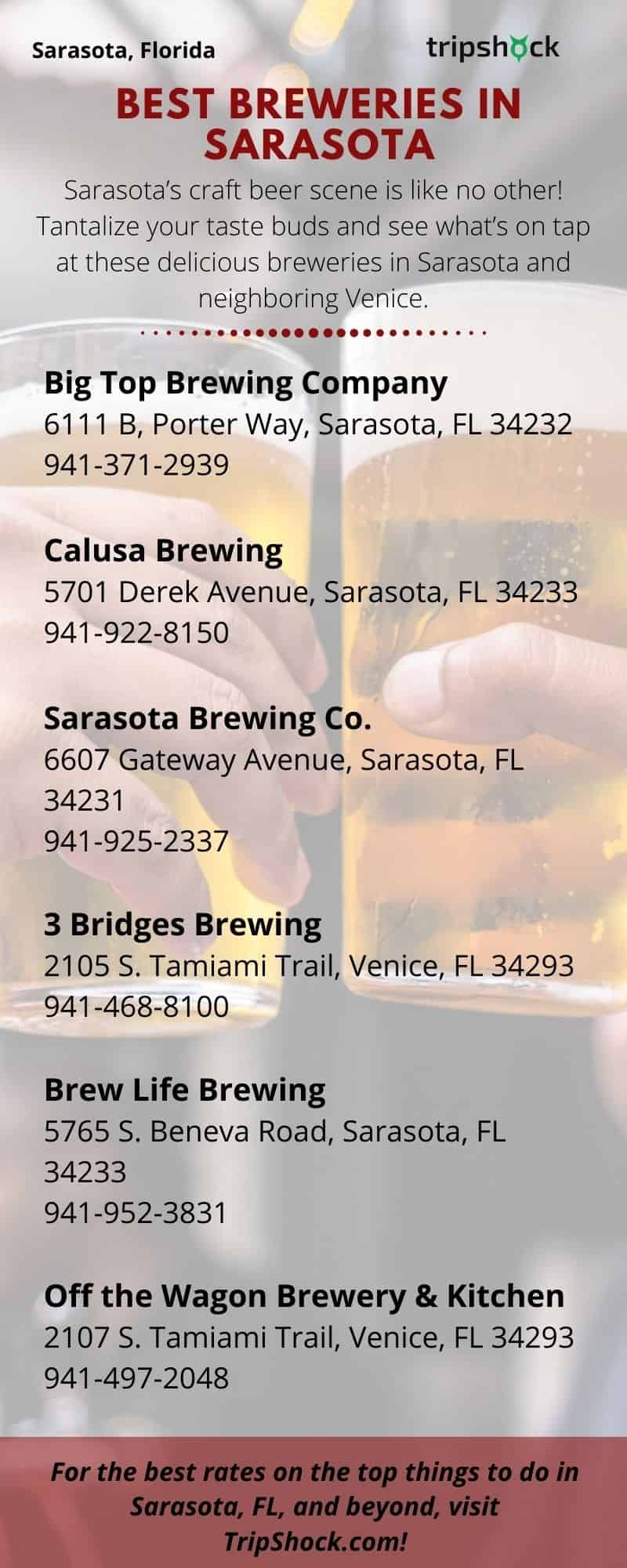 Best Breweries in Sarasota