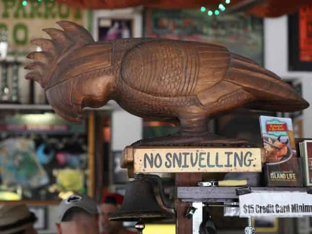 green parrot bar key west florida