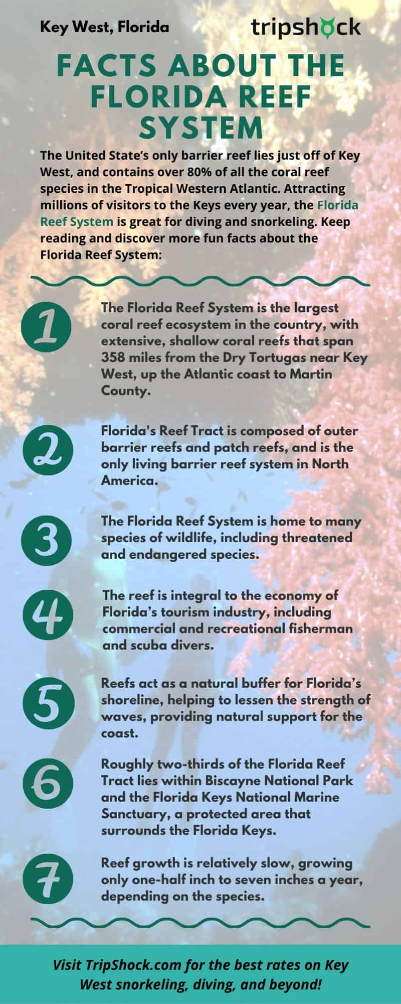 facts about the florida reef system