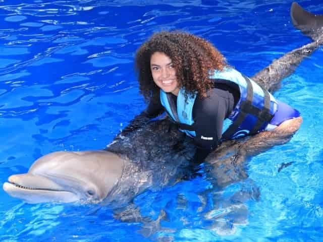 dolphin hugs at gulf world marine park
