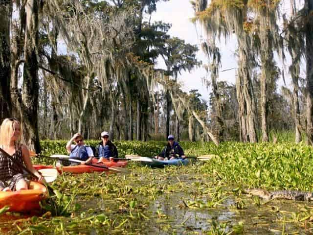 kayak tours through the louisiana swamp