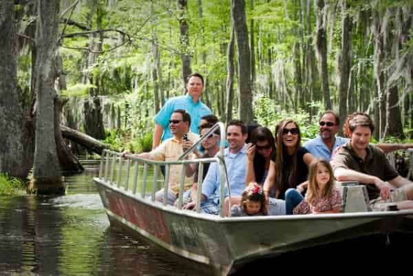 honey island featured swamp tour