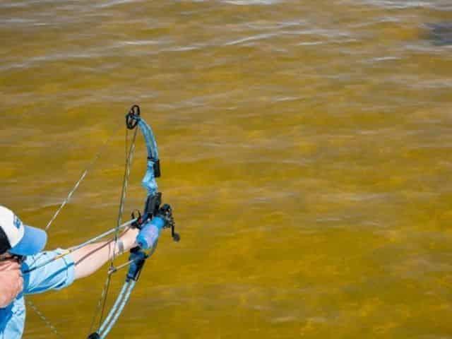 Bowfishing Charter