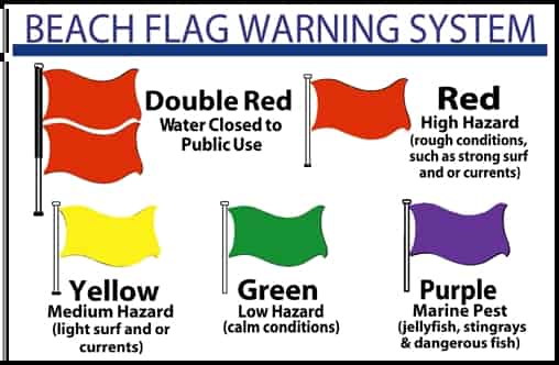 beach-flag-warning