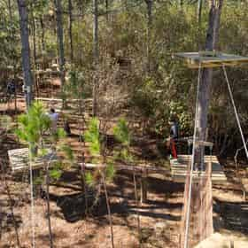 Gulfport Zip N Fun Adventure Park: Tree Top Afternoon Course