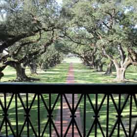 Guided Oak Alley Plantation Tour with Transportation from New Orleans Hotels