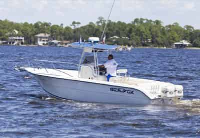 Private Daytime Dolphin Sightseeing Cruise with Gulf Island Charters