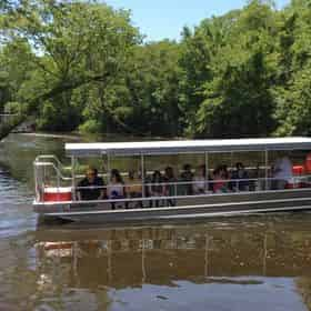 VIP Swamp Experience With Optional Transportation
