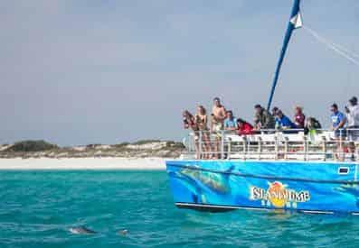 Panama City Beach Shell Island Dolphin and Snorkel Cruise