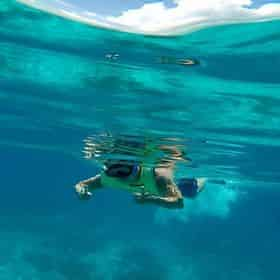 Rise and Reef Snorkel Trip with Breakfast