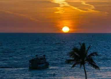 Clearwater Sunset Celebration Cruise