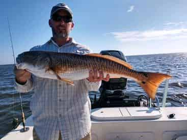 Private 4-Hour Inshore & Flats Fishing Charter with Light Tackle Adventures