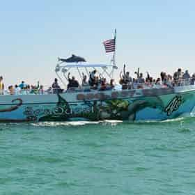 SeaQuest Dolphin Sightseeing Tour