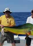 Private Charter Fishing by Captain Conch Charters