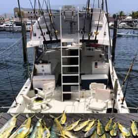 Half Day Split Charter Fishing in Key West