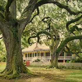 Laura Plantation Tour with Transportation from New Orleans