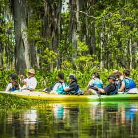 Paddle &  Oak Alley Plantation Combo with Transportation from New Orleans