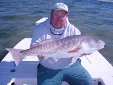 6-Hr Inshore & Flats Fishing Charter with Light Tackle Adventures
