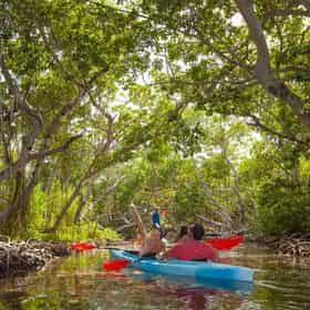 Full Day Sail, Snorkel and Kayak Excursion