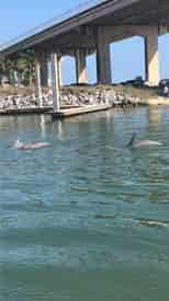 Family Fun Combo Adventures with Gulf Island Charters