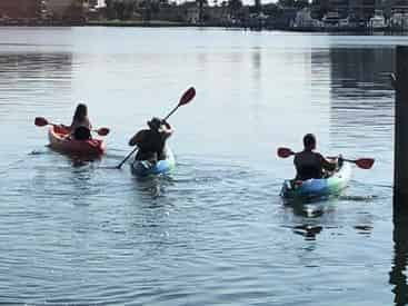 Clearwater SUP Paddleboard & Kayak Tours
