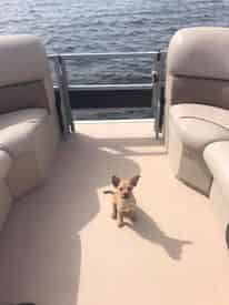 8 Hour Pontoon Boat Rental by Funday Watersports