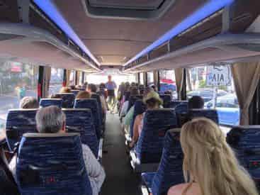 Everglades Morning Tour & Wildlife Show with Transportation