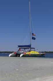 Daytime Dolphin Sail Aboard The Footloose Catamaran