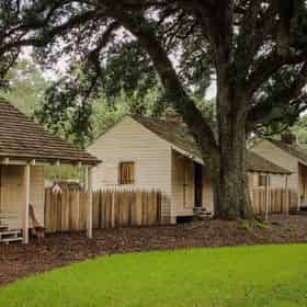 Small Group Tour of Oak Alley Plantation with Transportation from New Orleans
