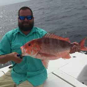 The Sampler - Inshore/Bay/Nearshore Fishing Charter with Coastal Life Charters & Adventures