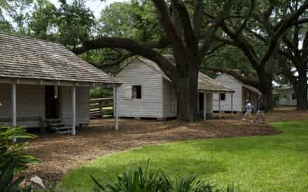 Oak Alley Plantation Admission & Guided Tour with Transportation from New Orleans